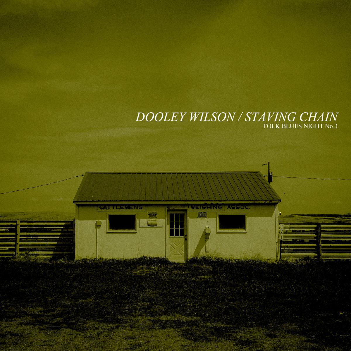 Dooley Wilson & Danny Kroha - Detroit Woman Blues
