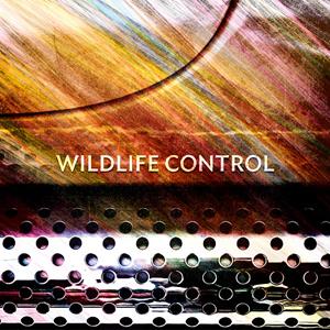 Wildlife Control Darkness Artwork
