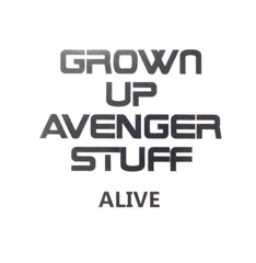 Grown Up Avenger Stuff - Now