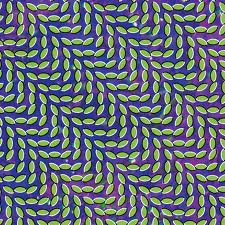 Animal Collective My Girls Artwork