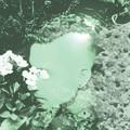 Sombear - Love You In The Dark