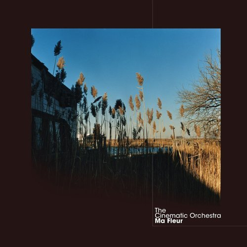 The Cinematic Orchestra - To Build A Home (Ft. Patrick Watson)