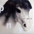 Ginuwine Pony Artwork