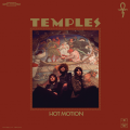 Temples You're Either On Something Artwork