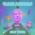 Glass Animals Heat Waves Artwork