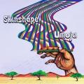 Skinshape Amigos e Inimigos (Ft. D'Alma) Artwork