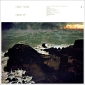 Fleet Foxes Third of May / Ōdaigahara Artwork