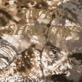Twin Shadow Tyrant Destroyed Artwork