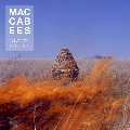The Maccabees Pelican Artwork