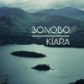 Bonobo Kiara Artwork