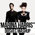 Marina & The Diamonds vs Calvin Harris Marina Harris (DOSVEC Mashup) Artwork
