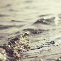Of Oceans In Love, Not Limbo Artwork