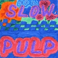 Slow Pulp Preoccupied Artwork