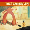 The Flaming Lips Do You Realize Artwork