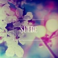 Vance Joy - Riptide (Julia Church Cover) (Suede Remix)