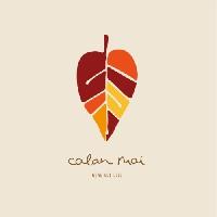 Calan Mai - We've Got Love