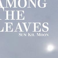 Sun Kil Moon - Sunshine in Chicago