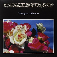 Whiskeytown - Everything I Do