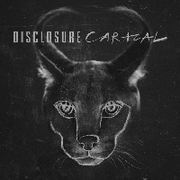 Disclosure Moving Mountains (Ft. Brendan Reilly) Artwork