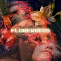 Fern Murphy - Flowerbeds