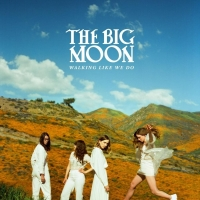 The Big Moon - Why