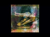 Mogwai - Dry Fantasy