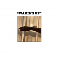 Django Django - Waking Up Ft. Charlotte Gainsbourg (Free Love Remix)