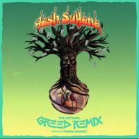 Tash Sultana - Greed (Thomas Bonney Remix)