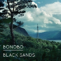 Bonobo We Could Forever Artwork