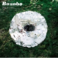 Bonobo If You Stayed Over (Ft. Fink) Artwork