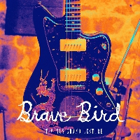 Yeah Yeah Yeahs - Maps (Brave Bird Cover)