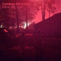 Cymbals Eat Guitars - Hawk Highway