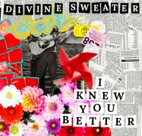 Divine Sweater - I Knew You Better