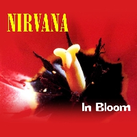 Nirvana In Bloom (Fink Cover) Artwork