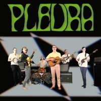 King Gizzard & The Lizard Wizard - Pleura