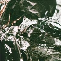 Sylvan Esso - Numb (Teddy Geiger remix)