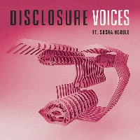 Disclosure - Voices (Wookie RMX)