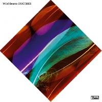 Wild Beasts - Loop The Loop