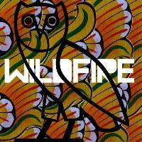 SBTRKT Wildfire (Ft. Little Dragon) Artwork
